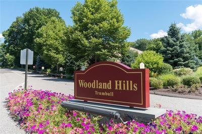 Trumbull Condo/Townhouse For Sale: 304 Woodland Hills Drive #304