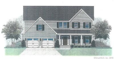 Ridgefield Single Family Home For Sale: 128 Silver Spring Road #Lot 2