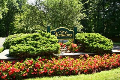 Enfield Condo/Townhouse For Sale: 181 The Meadows #181