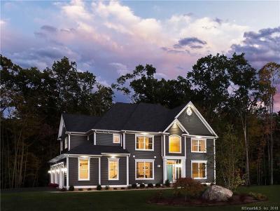 Burlington Single Family Home For Sale: Vii Nelson Drive