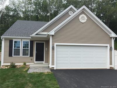 Middletown Single Family Home For Sale: Unit 7 Webster #7