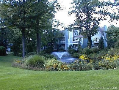 Norwich Condo/Townhouse For Sale: 323 Old Pond Lane #323