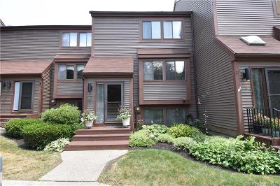 Canton Condo/Townhouse For Sale: 14 Wickhams Fancy #14