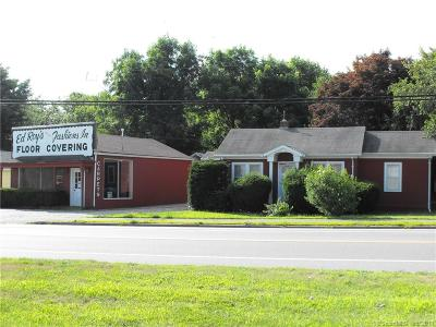 Waterford Commercial For Sale: 340 Willetts Avenue