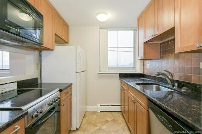 New Haven Condo/Townhouse For Sale: 124 Court Street #503