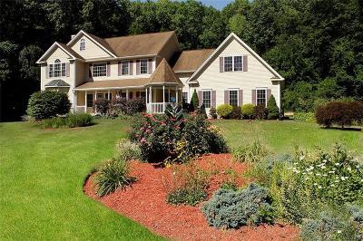 Southington Single Family Home For Sale: 60 Birmingham Drive