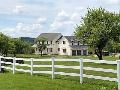 Litchfield Single Family Home For Sale: 272 Old Mount Tom Road
