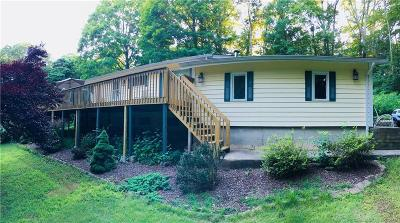 North Branford Single Family Home For Sale: 142 Valley Road