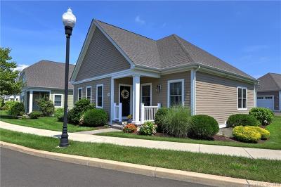 Orange Condo/Townhouse For Sale: 102 Sunrise Hill Circle #102