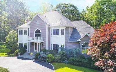 Stamford Single Family Home For Sale: 9 Spring Hill Lane East