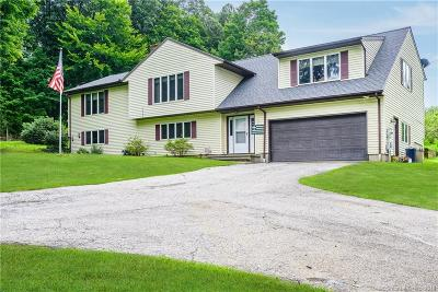 New Milford Single Family Home For Sale: 7 Wades Lndg