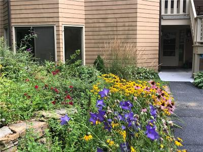 Litchfield County Condo/Townhouse For Sale: 4 Upper Main Street #1