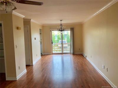 Danbury Condo/Townhouse For Sale: 10 East Franklin Street #C19