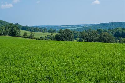 Sharon Residential Lots & Land For Sale: Millerton Road