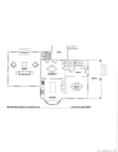 Ridgefield Single Family Home For Sale: 173 High Ridge Avenue