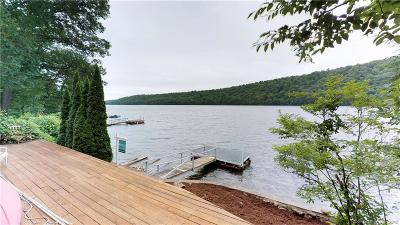 New Milford Single Family Home For Sale: 813 Candlewood Lake Road South