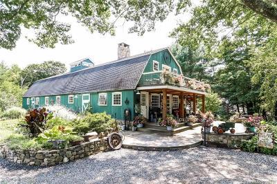Woodbury Single Family Home For Sale: 419 Weekeepeemee Road