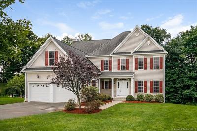 Danbury Single Family Home For Sale: 7 Carla Drive