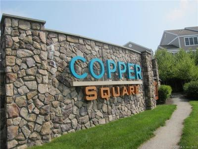 Bethel Condo/Townhouse For Sale: 80 Copper Square Drive #80