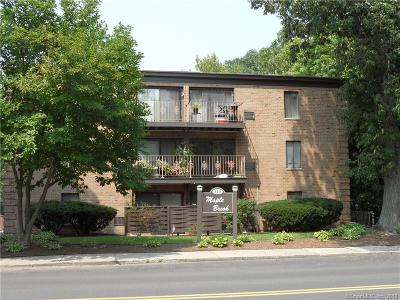 Stamford Condo/Townhouse For Sale: 110 Maple Tree Avenue #3A