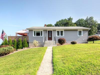 Plainville Single Family Home For Sale: 24 View Street