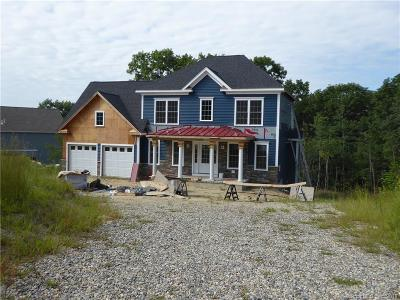 Windham County Single Family Home For Sale: 55 Deerwood Drive