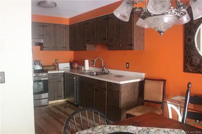 Torrington Condo/Townhouse For Sale: 259 Cliffside Drive #259