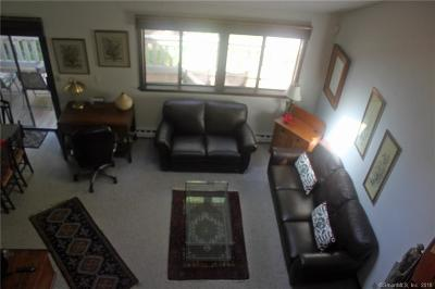 Torrington Condo/Townhouse For Sale: 260 Cliffside Drive #260
