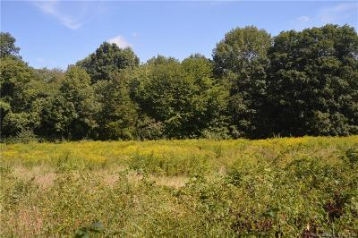 Windham County Residential Lots & Land For Sale: North Brook Street