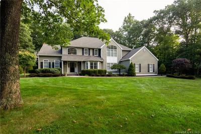Newtown Single Family Home For Sale: 9 Clapboard Ridge Road