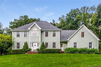 Ridgefield Single Family Home For Sale: 28 Lynn Place