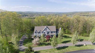 New Haven County Single Family Home For Sale: 250 Valley Stream Lane