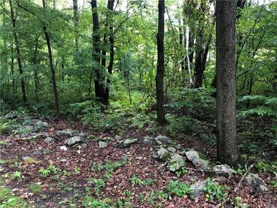 Southbury Residential Lots & Land For Sale: 636 Judd Road