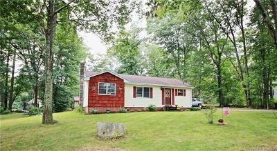 Windham County Single Family Home For Sale: 29 Pleasant View Drive