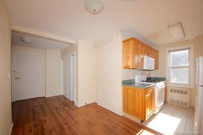Stamford Condo/Townhouse For Sale: 700 Summer Street #2A