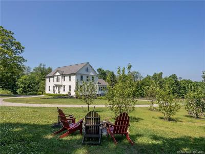 Litchfield Single Family Home For Sale: 287 Prospect Mountain Road