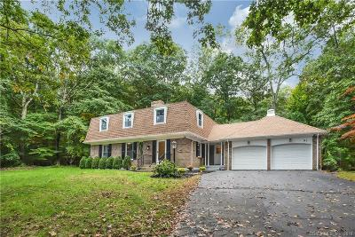 Norwich Single Family Home For Sale: 91 Sherwood Lane