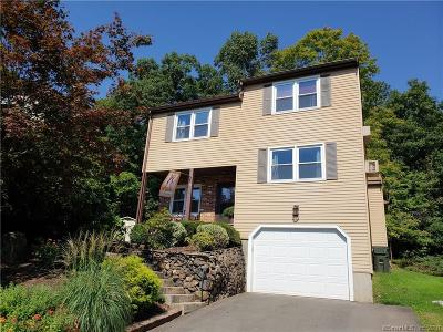 Newington Condo/Townhouse For Sale: 41 Sunny Brook Drive