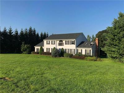 New Milford Single Family Home For Sale: 64 Bonnie Vu Lane
