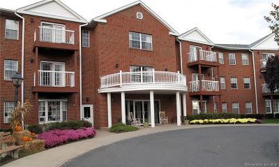 Windsor Condo/Townhouse For Sale: 625 Palisado Avenue #207