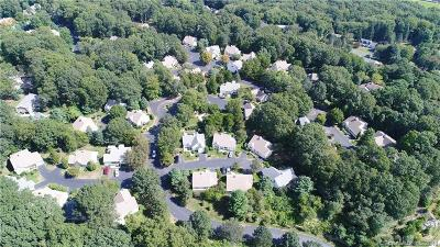 New London County Condo/Townhouse For Sale: 3a Strawberry Lane #3