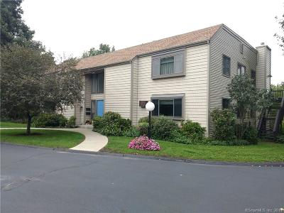 New London County Condo/Townhouse For Sale: 91 Riverview Road #9A