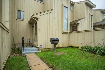 Wethersfield Condo/Townhouse For Sale: 205 Spring Street #205