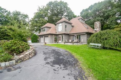New Milford Single Family Home For Sale: 5 Mountain Drive