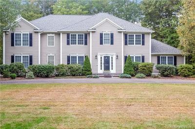 Bethany Single Family Home For Sale: 739 Carrington Road