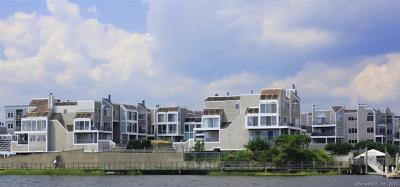 New Haven Condo/Townhouse For Sale: 123 Harbour Close #123