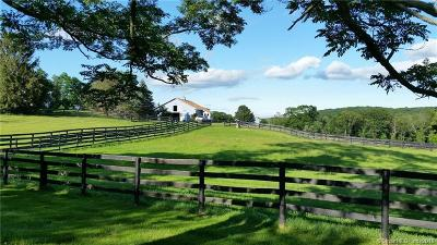 Dutchess County Single Family Home For Sale: 738 North Quaker Hill Road
