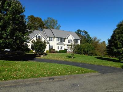 New Milford Single Family Home For Sale: 1 Lillinonah Ridge Drive