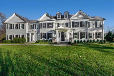 Fairfield County Single Family Home For Sale: 293 Chapman Lane