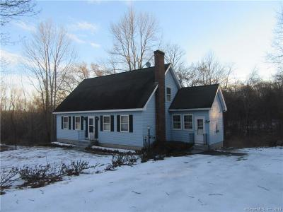 Putnam Single Family Home For Sale: 245 Liberty Highway